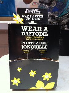 Students show support by purchasing daffodil pins. Photo: Abigail Chau