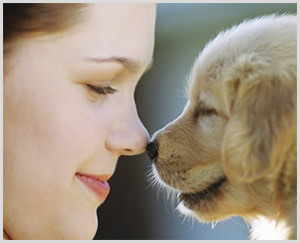 Owners and their pets may truly share mutual connections of love. (Image courtesy of CPVH)