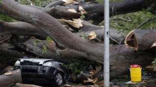 A car crashed into a tree, killing a young boy (Image courtesy of BBC News).